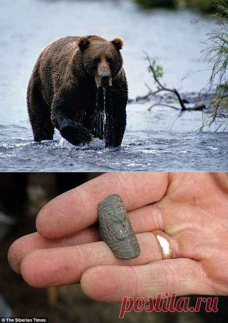 Сибиряки поклонялись бурому медведю.