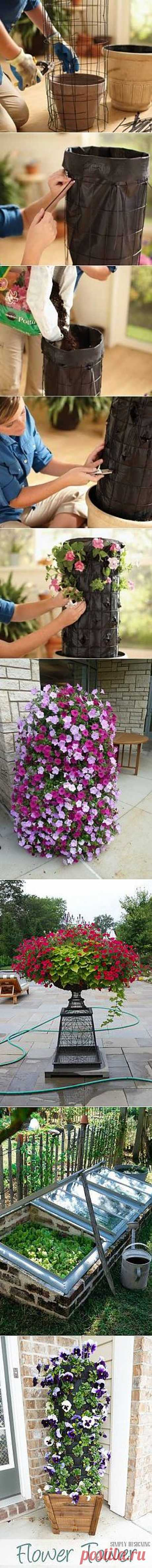 Alternative Gardning: How to Make Petunia Bashnya | Gardening