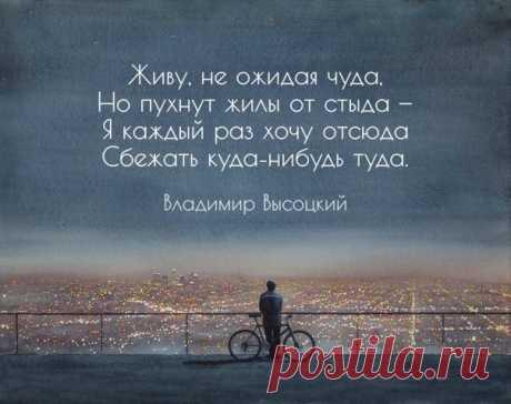15 цепляющих цитат Владимира Высоцкого: ↪