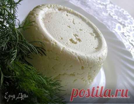 Домашний адыгейский сыр. Ингредиенты: молоко, творог, яйца куриные | Официальный сайт кулинарных рецептов Юлии Высоцкой
