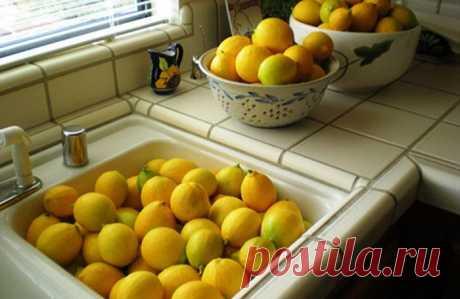 25 способов использования лимонов, о которых вы не слышали / Все для женщины