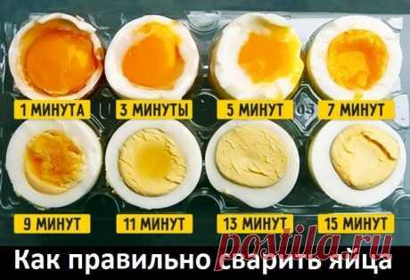 Как правильно сварить яйца.