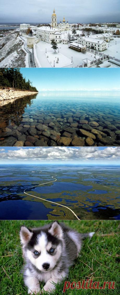 Загадочная Сибирь: факты , которые удивляют и сегодня | путешествуем онлайн | Яндекс Дзен