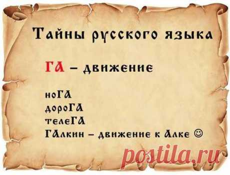 Фразеологизмы или фразеологические обороты составляют огромный пласт русского языка. Учёные-лингвисты определяют фразеологизм как устойчивое сочетание слов, постоянное по составу и значению…