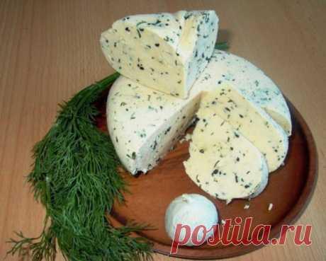 """Замечательный рецепт сыра домашнего, причем очень быстрый и вообще """"без заморочек""""."""