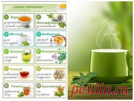 10 самых полезных чашек чая — Мегаздоров