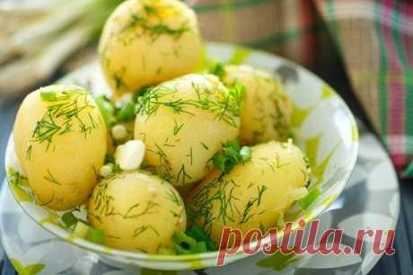 Сколько можно есть картофеля, чтобы не набрать лишний вес
