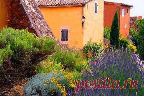 Французский садик – схема цветника. Стиль французский Прованс в саду. | Любимые цветы