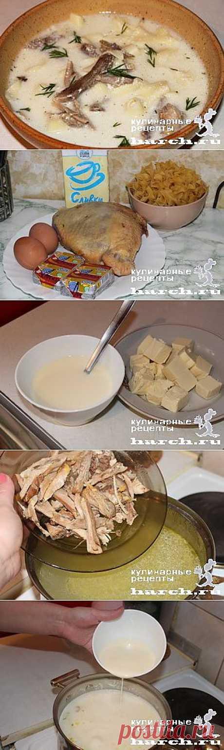 Сливочный куриный супчик с лапшой и сыром | Харч.ру - рецепты для любителей вкусно поесть
