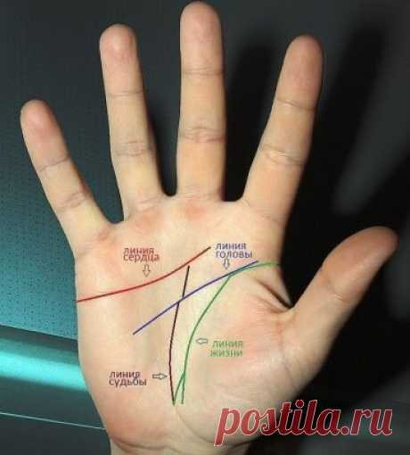 It is a little that we and as we can read on our hand thanks to chiromancy. In other words - how to guess on a hand and what to begin with :)