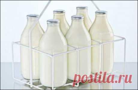 Польза молока в бодибилдинге | Sport My Way | Sport - My Way