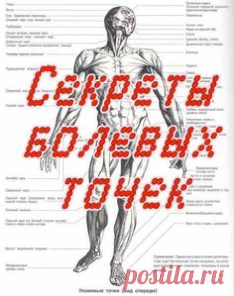 Секреты болевых точек (4 DVD-rip) [2008 г., самооборона, болевые точки, DVDRip]