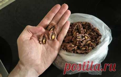 Теперь чищу мешок грецких орехов за 5-7 минут. Рассказываю 2 хитрых способа, ядра остаются целые | Сам сказал - Сам сделал | Яндекс Дзен