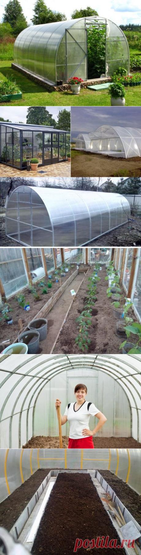 Когда высаживать рассаду в теплицу из поликарбоната в Подмосковье