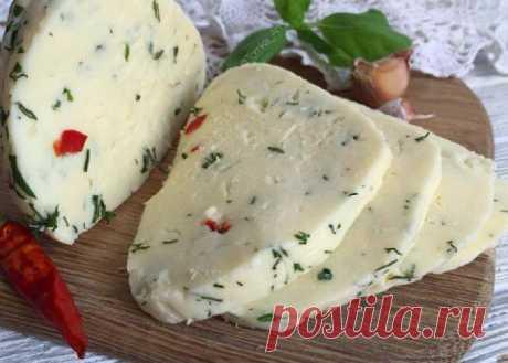 Вкуснейший Адыгейский сыр в домашних условиях - Вкусные рецепты - медиаплатформа МирТесен