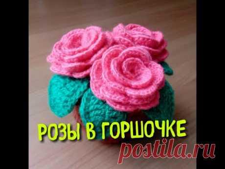 МК Розы в горшочке / Подарок на 8 марта / Вяжем крючком