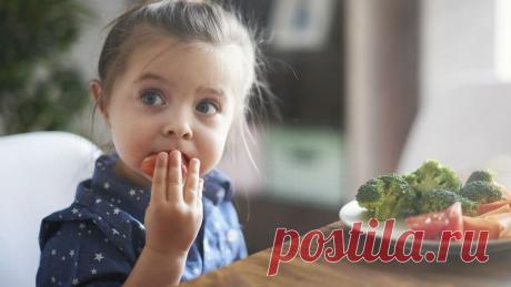 Домашнее Похудение. Вегетарианство для детей: опасно или нет?