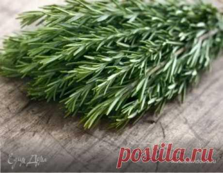 Отличная трава для мозгового кровообращения, сердца, сосудов, надпочечников, суставов, кожи и волос - 8 Января 2019 - Наша Планета