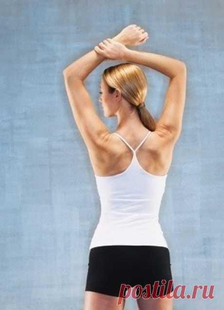 Упражнения на руки, плечи, спину и грудь.