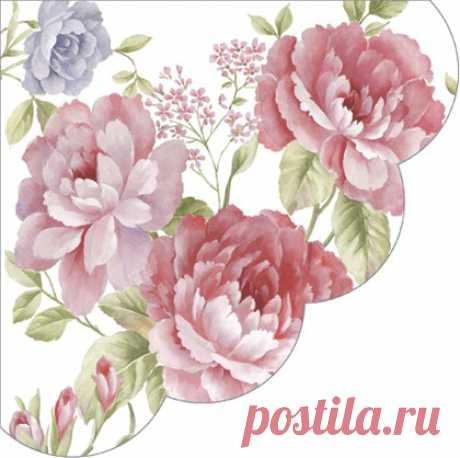 Салфетки для декупажа Paw Julietta, круглые d32см, 12шт SDR084200 – купить с доставкой на Posuda40.ru