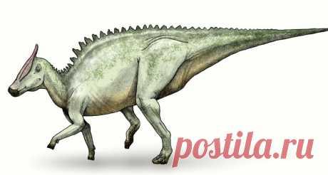 Редкий вид человеческого рака нашли на хвосте динозавра Для ученых давно не секрет, что многие животные также могут болеть раком, однако у каждого вида, обычно, свои типы онкологии. Тем удивительнее было для