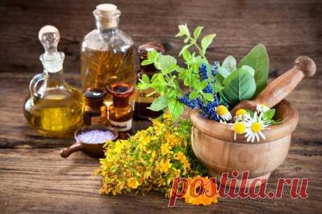 Волшебный травяной сбор лечит многие опухоли