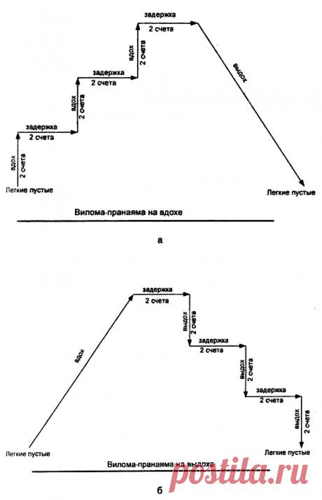 Нормализация давления и лечение варикоза.Данила Сусак.