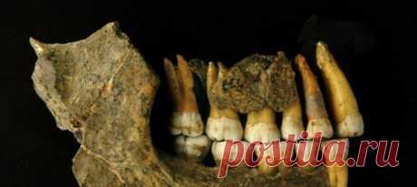 Радиоуглеродный анализ дал сбой, когда речь зашла о банальном загрязнении костей наших древних родичей. Специалисты из Оксфорда улучшили этот метод археологического датирования и пришли к открытию, способному переписать часть истории неандертальцев.