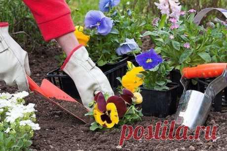Когда нельзя сажать и сеять  Народные приметы для садоводов-огородников  - Картофель нельзя сажать на Вербной неделе, по средам и субботам - будет портиться. Показать полностью…