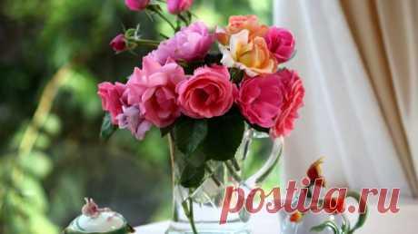 Как сохранить свежесть срезанных цветов? Секреты стойкости букетов — Полезные советы