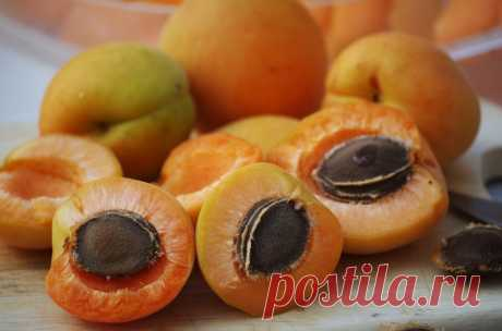 Готовим изумительную настойку на косточках абрикоса.   О САМОГОНЕ и ОБОВСЕМ   Яндекс Дзен