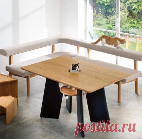 Стол для всей семьи и её питомца. Японский производитель мебели Dinos представил модель стола Neko toKutsurogu, «Отдыхайте скошками». В комплекте со столом идут специальные ступени для питомцев и табурет. Сидячие места вокруг стола представлены диванами с прямоугольными и мягкими спинками, на которых так удобно спать кошачьим! В центре стола же есть круглое отверстие (которое можно закрыть крышкой, когда оно не используется). Под столом расположена специальная подставка-табурет, где может…