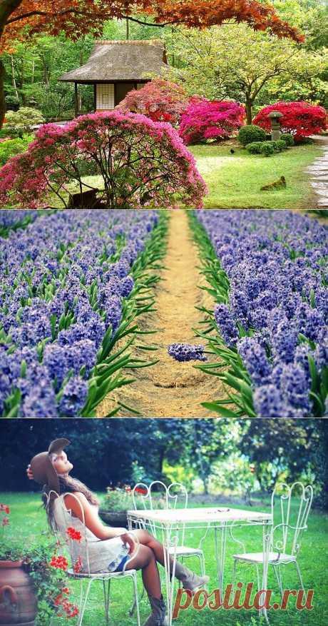 Как украсить сад своими руками. Декор для дачи и сада