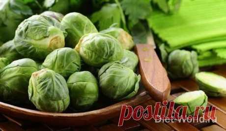 Брюссельская капуста — диетические рецепты для ПП на Diet-World.ru