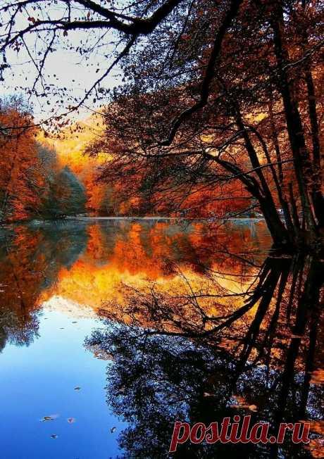 Image about beautiful in Winter, Spring, Summer & Fall by Crimson в Яндекс.Коллекциях