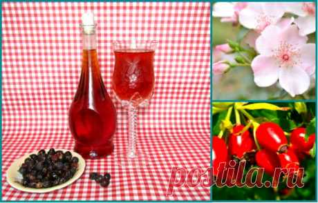 Вино из шиповника — Кулинарная книга