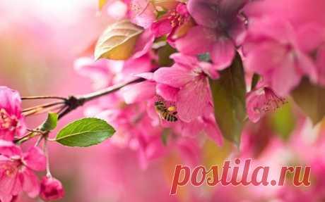 Утро доброе! Хорошего позитивного дня всем-всем-всем! ♥