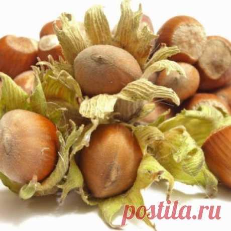 Как создать свой ореховый сад - МирТесен