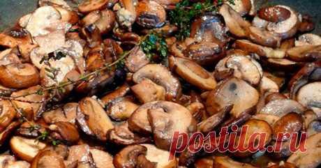 Теперь жарю грибы только по этому рецепту. Идеальный вкус! Блюдо получается восхитительным!