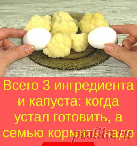 Всего 3 ингредиента и капуста: когда устал готовить, а семью кормить надо