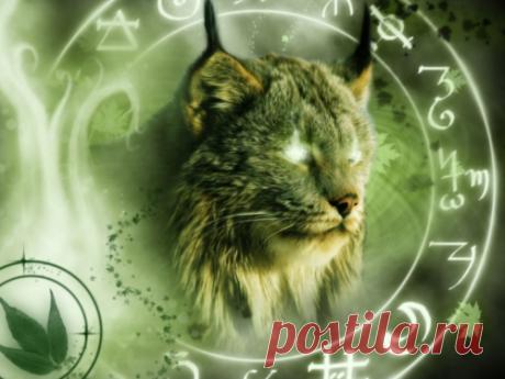 Тотемное животное по Знаку Зодиака