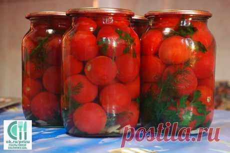 помидоры без уксуса ПАЛЬЧИКИ ОБЛИЖЕШЬ
