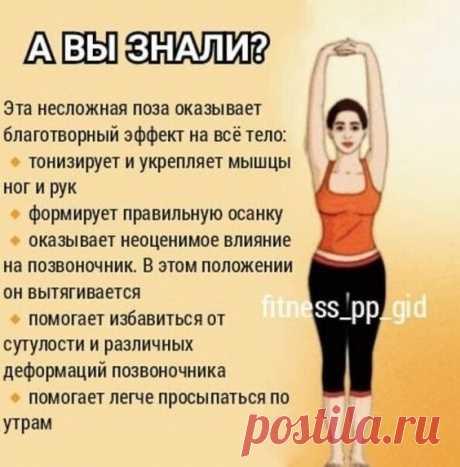 Зачем поднимать руки вверх? 4 полезные причины поднимать руки вверх Естественное положение рук человека — опущенные вниз. Но, как утверждают физиотерапевты, очень полезно в течение дня поднимать…