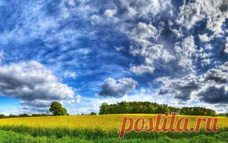 Красивые облака над полем скачать картинки в хорошем качестве