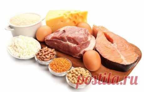 Белковая диета: меню на 14 дней, продукты, как использовать её