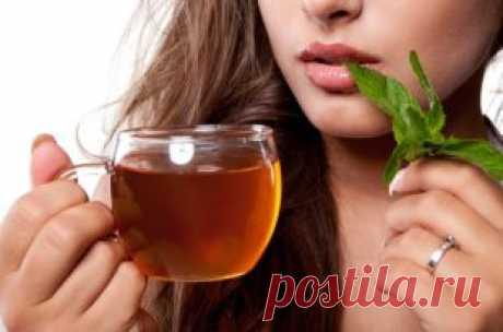 Как похудеть с зеленым чаем - Советы для тебя