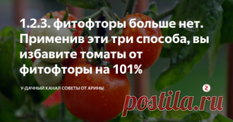 1.2.3. фитофторы больше нет. Применив эти три способа, вы избавите томаты от фитофторы на 101% Фитофтороз у томатов, одно из самых распространенных и коварных заболеваний. Оно способно уничтожить урожай полностью. Большинство огородников знают об этой проблеме не по наслышке и за многие годы научились бороться с этой проблемой. Сегодня я вам расскажу по настоящему действенные методы. Если вы соблюдете их. То фитофтора вам не грозит. 1. Когда вы посадили рассаду томатов на постоянное место в