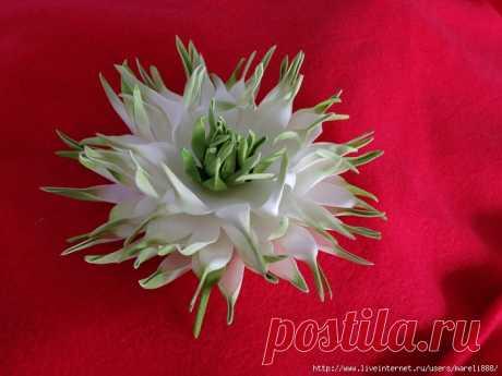 Las flores de foamirana | las Anotaciones con la marca las flores de foamirana | el Blog del contemplador Agnishanti