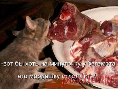 """Запеченое мясо """"пальчики оближешь"""""""