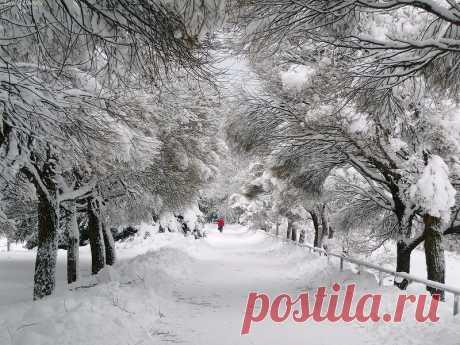 А снег летит светло, неторопливо....